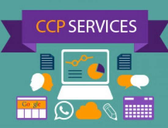 CC Professional Business Support